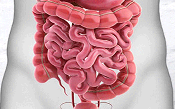 عملية-استئصال-الأمعاء