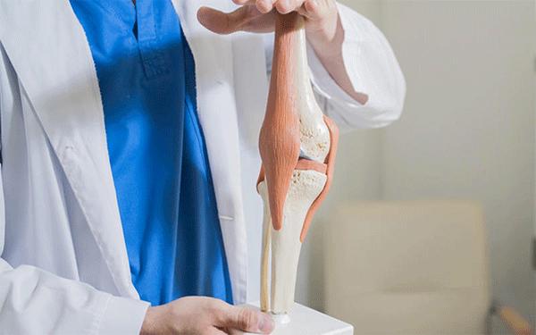 تركيب-مفصل-الركبة